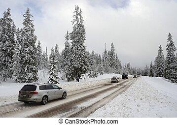 strada, attraverso, uno, wonderland inverno