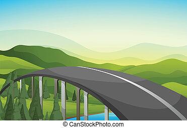 strada, curva, alberi pino