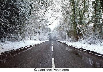 strada, su, uno, freddo, giorno inverni