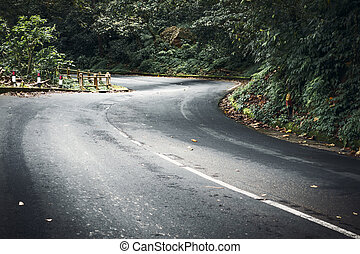 strada winding, montagna