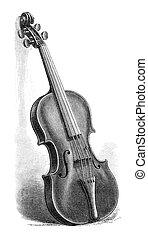 Stradivarius - Vintage engraved illustration of a...