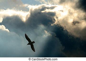 strahlen, und, wolkenhimmel