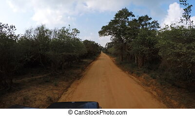Straight, Dirt Road through National Park in Sri Lanka, with Sound