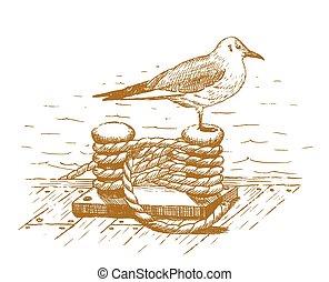 stram, seagull, bollard, siddende