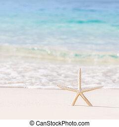 strand, achtergrond, mooi