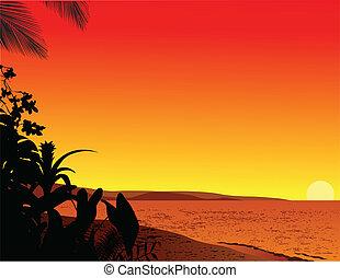 strand, bakgrund