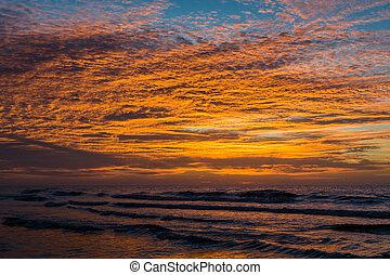strand, carolina., dårskap, ocean, atlanten, vågor, soluppgång, syd