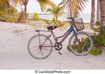 strand, fiets