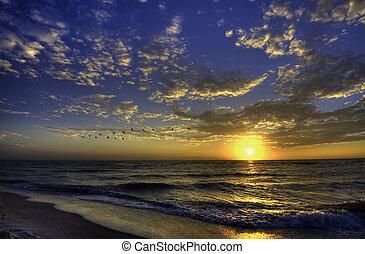strand, florida, solnedgång