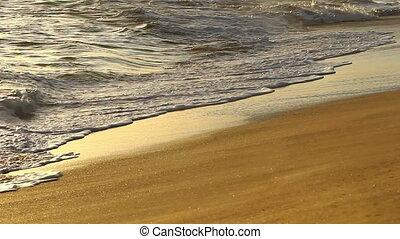 strand, golven, zanderig, tropische