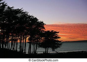 strand, hos, solnedgang
