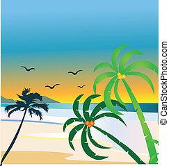 strand, illustration, vektor, tropisk