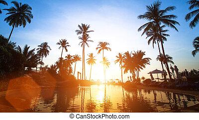 strand, in, de, tropen, mooi, sunset.