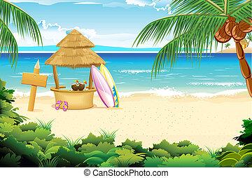 strand, kalm