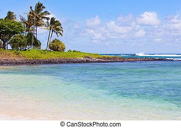 strand, kauai, aanzicht