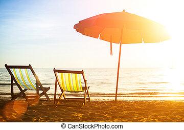 strand, lättingar, på, folktom, kust, hav, hos, sunrise.