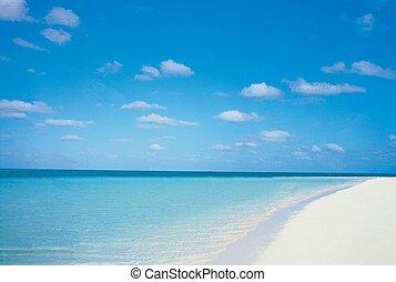strand, landschap