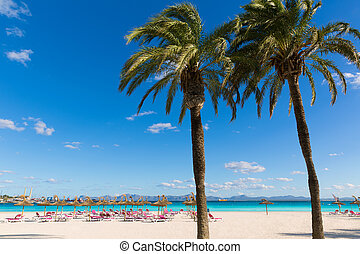 strand, mallorca, mallorca, alcudia, platja, av