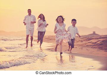 strand, ondergaande zon , gezin, vrolijke , plezier, hebben, jonge