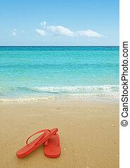 strand, röd, plumsar, flip