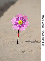 strand sandpappra, färgad, fått en knäck, torka, liten sol, röd