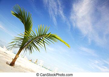 strand, scenisk