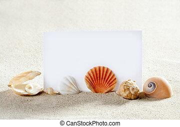 strand semester, sand, pärla, skalen, snigel, tom, papper