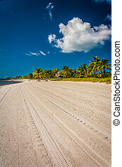 strand, smathers, nøgle vest, florida.