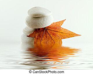 strand, stenen, met, blad, en, bewateer weerspiegeling