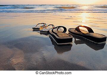 strand, våt