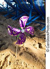 strand, violett, liten sol