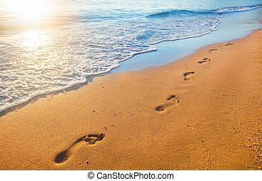 strand, voetafdrukken, tijd, ondergaande zon , golf