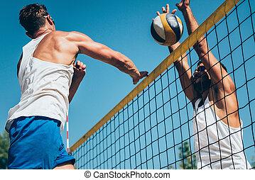 strand volleyboll, specificera, -, manlig, på, internetet