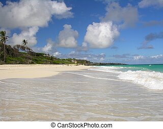 Stranded - Impressions from Crane Beach / Barbados