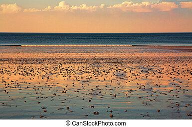 stranden solnedgång