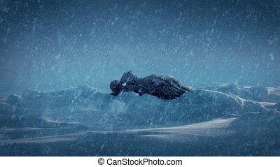Strange Alien Object In The Snow