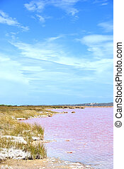 Strange colored Water at Pink Lake, Western Australia