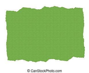 strappato, carta, verde, textured