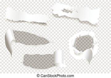 strappato, di, carta, su, uno, trasparente, fondo, vettore, e, illustrazione