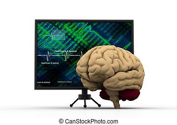 strategia, mózg, handlowy