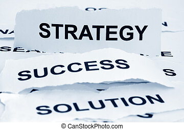 Strategy sucess solution