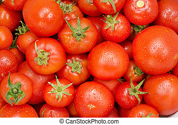 strava, rajče, skupina