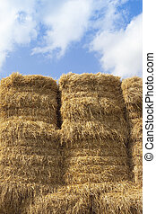 straw bale and summer sky background