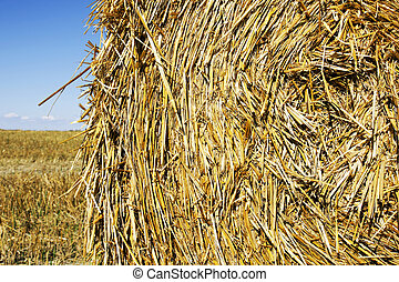 Straw bale close-up