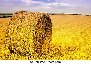 straw bale in the field