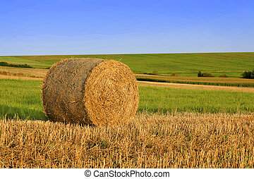 Straw bale on field under blue sky