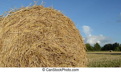 straw bale roll - closeup of straw bale in agriculture field...