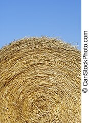 straw bale - round bale of straw with blue and clear sky