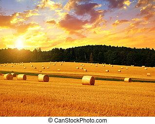 Straw bales at sunset.