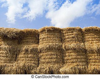 straw bales in summer